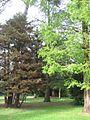 Jardin botanique Besançon 011.jpg