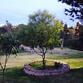 Jardin tec de monterrey.jpg