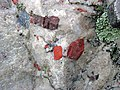 Jasper pebbles in quartzite (Lorrain Formation, Paleoproterozoic, ~2.3 Ga; Ottertail Lake Northeast roadcut, near Bruce Mines, Ontario, Canada) 11 (33831638738).jpg