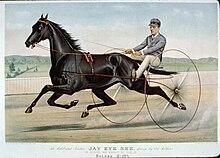 """carreras de caballos con aparejo """"sulky"""""""