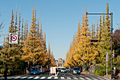Jingu-Gaien-Ginkgo-Street-01.jpg