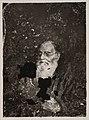 Johan Ludvig Runeberg, Society of Swedish Literature in Finland, Runebergbibliotekets bildsamling, slsa1160 486.jpg