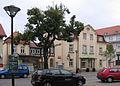 Kötzschenbroda Apotheke2.jpg