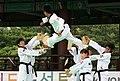 KOCIS Korea Taekwondo Namsan 12 (7628125294).jpg