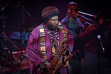 Kamasi Washington (2015).jpg