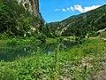 Kanjon Belog Rzava - panoramio (5).jpg