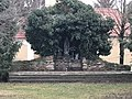 Kaplnka Panny Márie v Pate.jpg