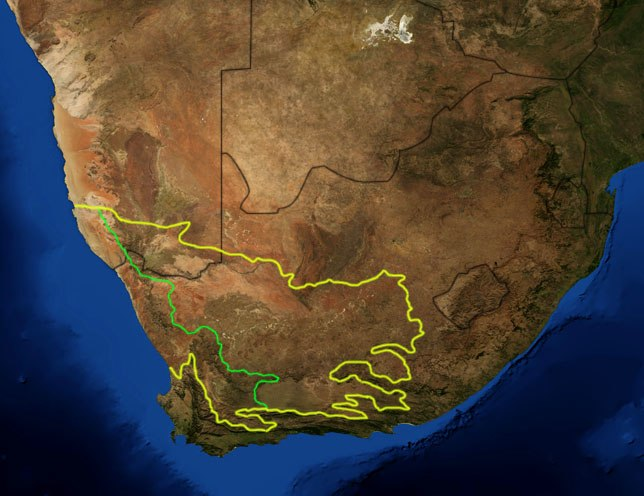 Karoo ecoregion
