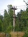 Katrineholm N, Sweden - panoramio (6).jpg