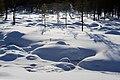 Kattajärvi Inari Suomi - Finland 2013-03 020.jpg
