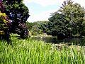 Kew Gardens 2.jpg