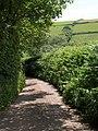 Kiln Lane, Stokenham - geograph.org.uk - 1358671.jpg