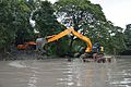 Kings Lake Dredging - Indian Botanic Garden - Howrah 2013-10-27 3823.JPG