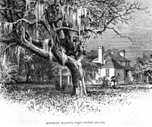 Drawing from the 1870s of the Kingsley house, a large oak tree, and a pair of ladies strolling under a parasol