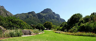 Kirstenbosch National Botanical Garden Botanical garden at the foot of Table Mountain in Cape Town