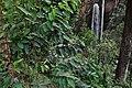 Kisiizi falls 05.jpg