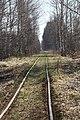 Klepikovsky District, Ryazan Oblast, Russia - panoramio (25).jpg