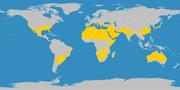 Karte der Subtropen