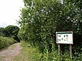 Knapp Copse - geograph.org.uk - 1408546.jpg