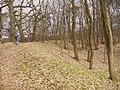Koenigswall - Wallburg (Hill Fort Wall) - geo.hlipp.de - 34704.jpg