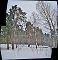 Kostroma, Kostroma Oblast, Russia - panoramio (11).jpg