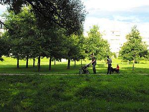 Utena - Krašuona Park