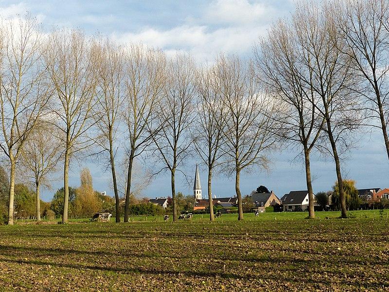 Kruibeke achter de bomen