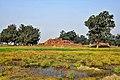 Kudan Buddha Taulihawa Kapilvastu Lumbini Zone Nepal Rajesh Dhungana 1 (1).jpg