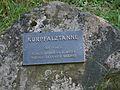 Kurpfalztanne 2011 Hinweisschild.JPG