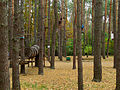 Kyiv Sovky Park13.JPG