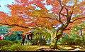Kyoto (16042880378).jpg