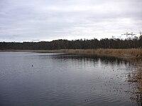 Kyrksjön Bromma 2009b.jpg