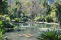 Lago em jardim botãnico - Rio de Janeiro - brasil.JPG