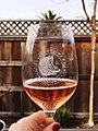 Lake Sonoma Rose Wine - 2018 - Stierch.jpg