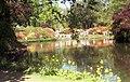 Lake reflections at Exbury Gardens - geograph.org.uk - 779053.jpg