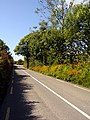 Lane near Cahersiveen - geograph.org.uk - 530186.jpg