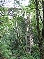 Latourell Falls (1440183684).jpg