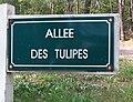Le Touquet-Paris-Plage 2019 - Allée des Tulipes.jpg