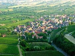 Leiselheim 06.650.jpg
