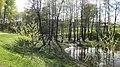 Leninsky District, Moscow Oblast, Russia - panoramio (136).jpg