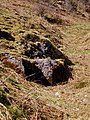 Limestone outcrop - geograph.org.uk - 1226479.jpg