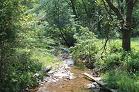 Little Brier Run 1.JPG