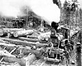 Loading logs at Hall and Bishop Logging Co camp, Gettysburg, Washington, ca 1900 (INDOCC 249).jpg