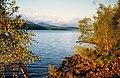 Loch Garry - geograph.org.uk - 1303799.jpg