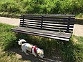 Long shot of the bench (OpenBenches 7287).jpg