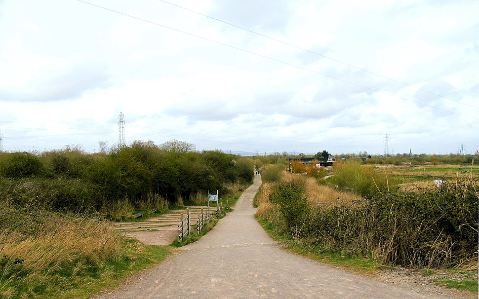 Looking Down from Hill at Newport Wetlands RSPB Reserve