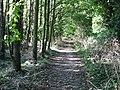 Looking S along footpath - geograph.org.uk - 962291.jpg