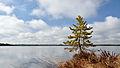Loosalu järv2.jpg
