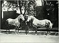 Lovers of the horse - brief sketches of men and women of the Dominion of Canada devoted to the noblest of animals. - (1909) (14785678683).jpg
