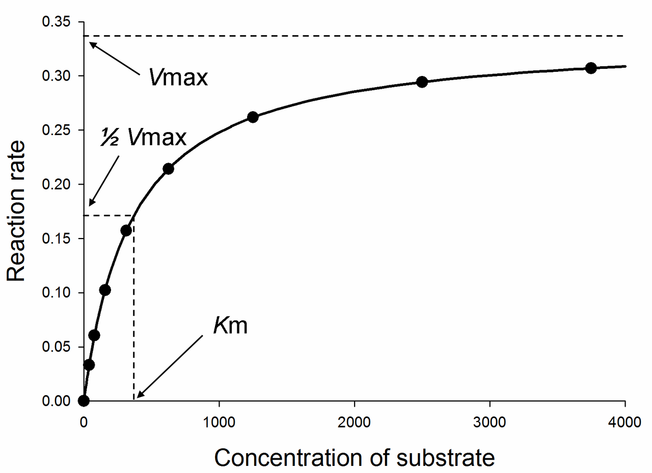 how to find km from michaelis menten graph